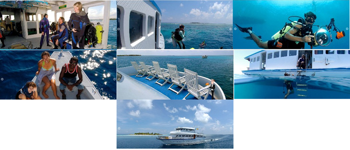 Investment Opportunity for a Profitable Cruise / Dive Boat Business in Maldives