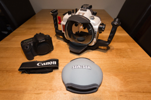Sea and Sea DX-10D housing, Canon 10D body, Dome Port
