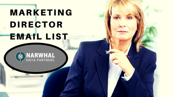 Marketing Director Email List