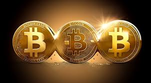 What is the Bitcoin support phone number?