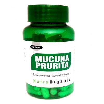 Buy Best Mucuna Pruriens Libido Capsules In Bulk